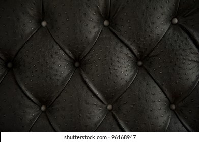 Luxury buttoned ostrich leather pattern.