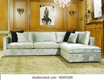 luxury classic living room