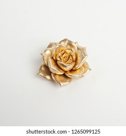 Luxury glod succulent isolated on white background. decoration golden plant for home. Decoration elements for Christmas, invitation, wedding cards, valentines day, greeting cards.