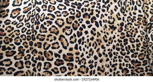 Luxury leopard  background. Animal print. Cheetah print
