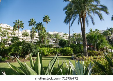 Luxury Marbella property, beachside apartments in Estepona with beautiful blue skies, palm trees with gardens and sea and beach views. The perfect holiday property in Spain on the Costa del sol.