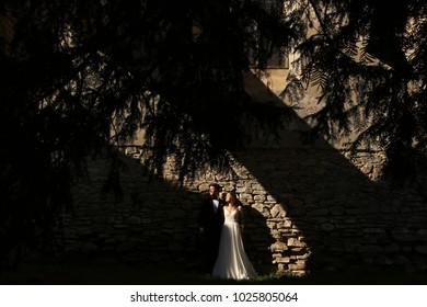 Luxury married wedding couple, bride and groom posing in front of old medieval door in sun