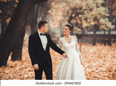 Luxury married wedding couple, bride and groom posing in park autumn