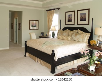 Luxury master bedroom suite in an upscale american home showing the king sized bed and the hallway to the bath area.