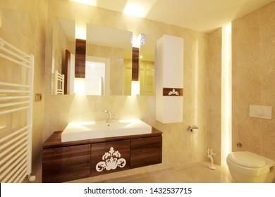 luxury and modern bathroom interior image