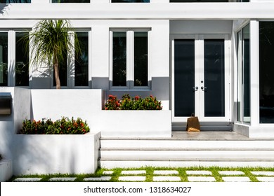 Luxury modern entrance architecture of house in Florida city on sunny day, property real estate with garden landscaping decoration, dark glass windows