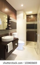 lujoso cuarto de baño interior de estilo moderno.