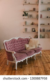 luxury pink sofa. living room with wooden floor. bookshelf near white wall