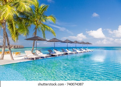 Luxury poolside with sun beds and deck chairs and palm trees over blue sea. Tranquil luxury vacation background. Recreational and relaxing beach scene