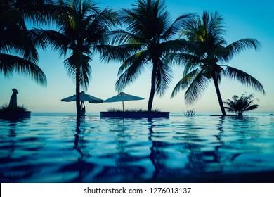 Luxury swimming pool. A beach on tropic coast, white beach umbrellas, sunbeds and palm trees against the sea. Natural garden in luxurious resort. Flower trees and green plants.