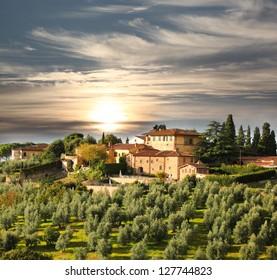 Luxury villa in Tuscany, famous vineyard in Italy
