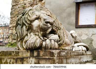 LVIV, UKRAINE - December 24,2017: Marble sculpture of lion with coat of arms. Symbol emblem of the city in front powder tower in Lviv (Lvov) Ukraine.