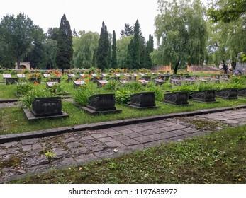 LVIV, UKRAINE - JUNE 22: Memorial WWII - Graves to the fallen soviet soldiers in the Second World War in the cemetery in Lviv on June 22, 2018 in Lvov, Ukraine