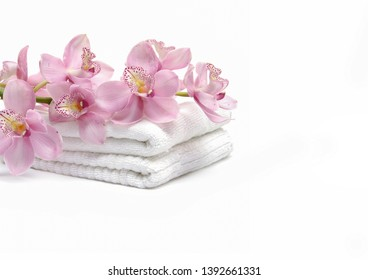 Lying on branch orchid flower on towel on white background