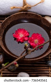 Lying on red cherry flower in water bowl with stones,towel on mat