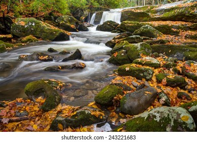 Lynn Camp Prong Cascades in Great Smoky Mountains National Park