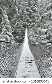 Lynn Valley Park on snowy day, North Vancouver, BC