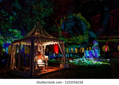 LYON, FRANCE, December 7, 2018 : Palais St-Pierre gardens during Festival of lights. For 4 nights, different artists light up buildings mixing splendor of the monuments and artistic creations.