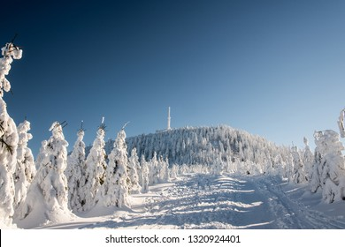 Lysa hora hill in winter Moravskoslezske Beskydy mountains in Czech republic with hiking trail, frozen trees and clear sky