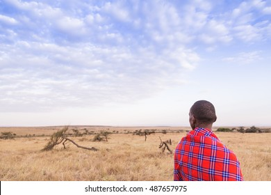 Maasai walking in the savannah at sunset