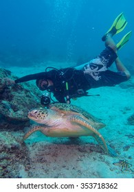 Mabul Island, Malaysia 2 July 2015 : Marine biologist checking a turtle at one of popular dive site in Mabul.