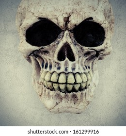 a macabre human skull on a textured background