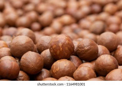 Macadamia fruit In the factory before packaging
