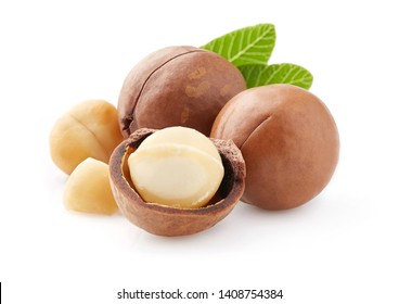 Macadamia with kernel nuts in closeup