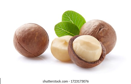 Macadamia with leaves on white background