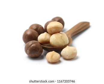 Macadamia nuts isolated on white background.