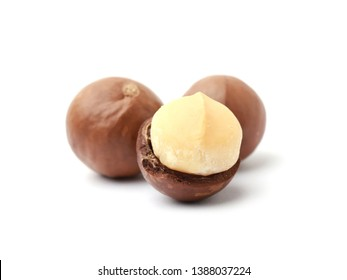 Macadamia nuts isolated on white background.