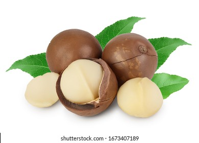 macadamia nuts isolated on white background with clipping path and full depth of field