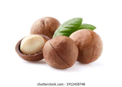 Macadamia nuts with leaves on white background