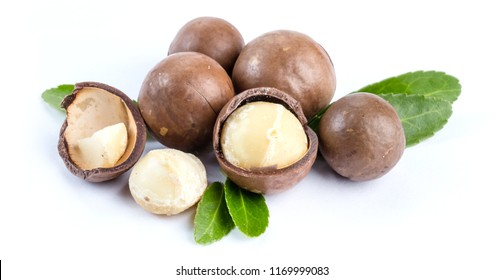 Macadamia nuts on background