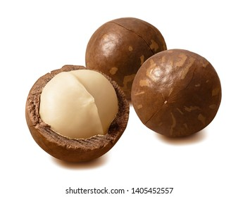 Macadamia nuts. Peeled and in nutshells. Isolated on white background with clipping path