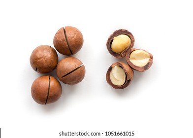 Macadamia on white background. Isolated nuts. Top view.