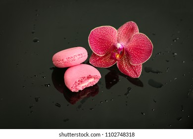 macaroon and Orchid on black background with water drops