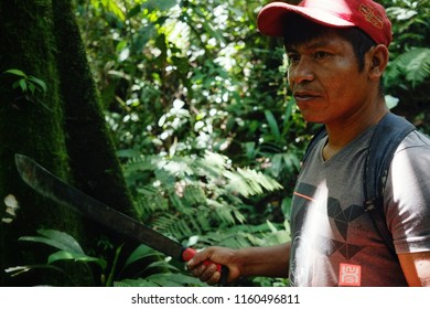 Macedonia, Amazonia / Colombia - MAR 15 2016: local ticuna tribal member looking for a log to fall in the middle of the rainforest