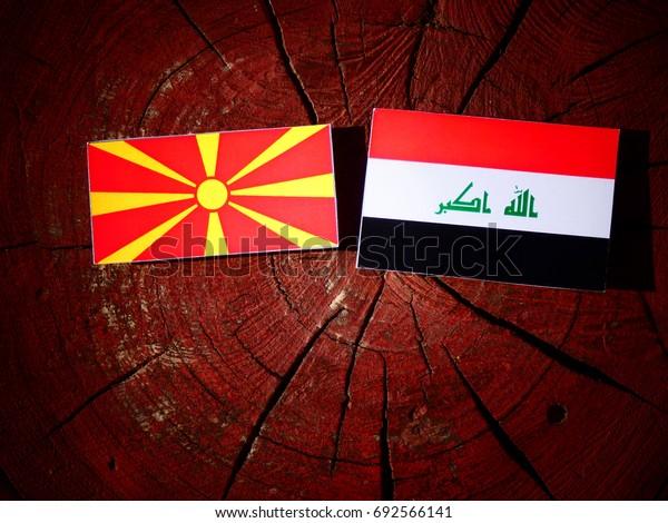 Macedonian flag with Iraqi flag on a tree stump isolated