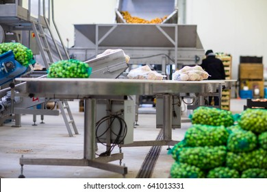 Machine in fruit and vegetable wholesale for sorting and packing