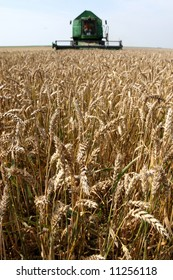 Machine harvesting the corn field