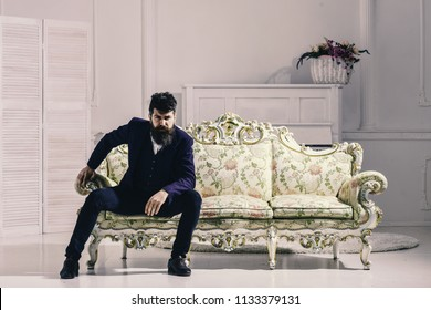 Macho attractive and elegant on serious face and thoughtful expression. Man with beard and mustache wearing fashionable classic suit, sits on old fashioned couch or sofa. Fashion and style concept.