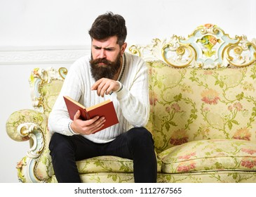 Macho on concentrated face reading book. Scandalous bestseller concept. Guy reading book with attention. Man with beard and mustache sits on baroque style sofa, holds book, white wall background.