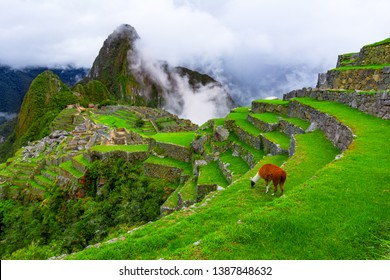 Machu Picchu, Cusco,Peru: Overview of the lost inca city Machu Picchu, agriculture terraces and Wayna Picchu, peak in the background