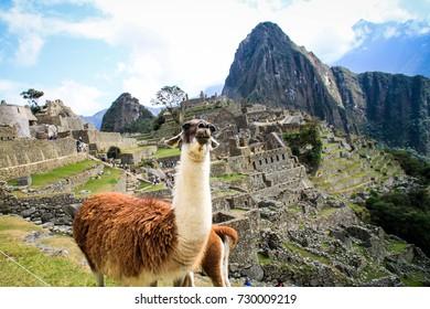 Machu Pichu UNESCO Site