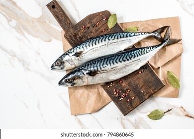 Mackerel fish on background
