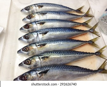 mackerel fish on the glass dish