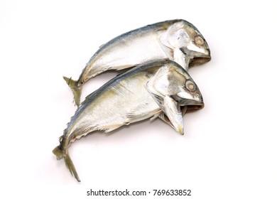 Mackerel fish on white background.