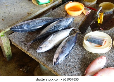 Mackerel and other fish for sale  at the Central Market of  Hoi An, Vietnam
