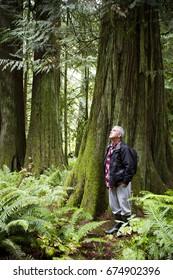MacMillan Provincial Park is a provincial park near Port Alberni on Vancouver Island in British Columbia, Canada.